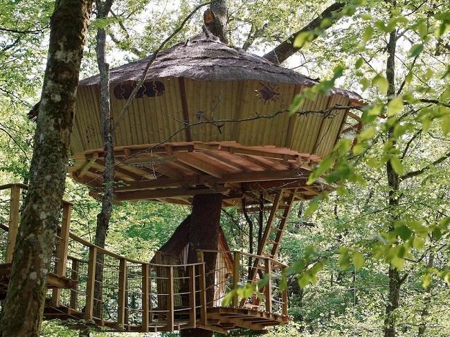 35 ngôi nhà trên cây tuyệt đẹp khiến bạn muốn sống thử một lần ảnh 26