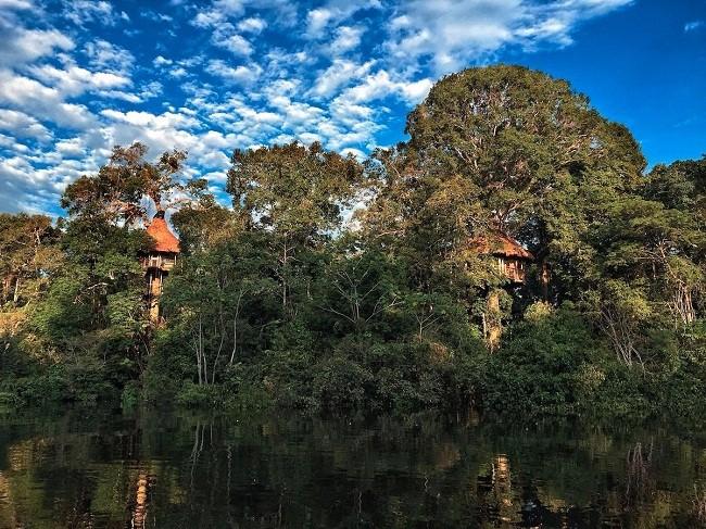 35 ngôi nhà trên cây tuyệt đẹp khiến bạn muốn sống thử một lần ảnh 29
