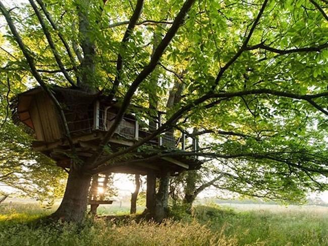 35 ngôi nhà trên cây tuyệt đẹp khiến bạn muốn sống thử một lần ảnh 31