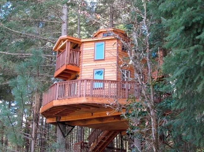 35 ngôi nhà trên cây tuyệt đẹp khiến bạn muốn sống thử một lần ảnh 33