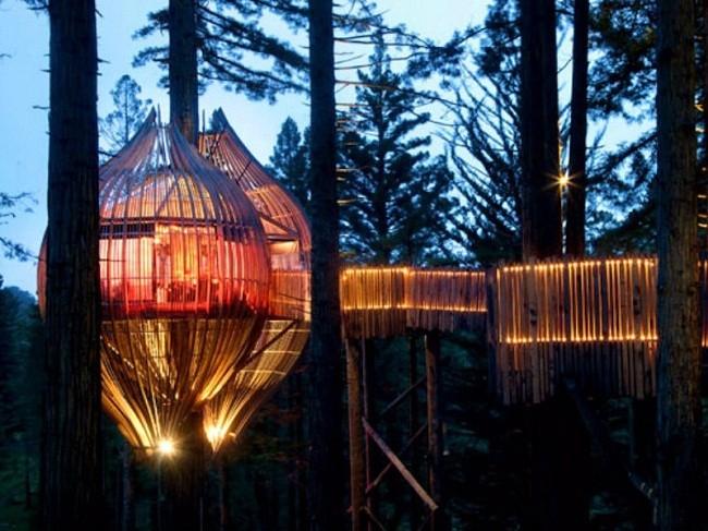 35 ngôi nhà trên cây tuyệt đẹp khiến bạn muốn sống thử một lần ảnh 5