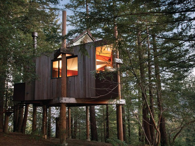 35 ngôi nhà trên cây tuyệt đẹp khiến bạn muốn sống thử một lần ảnh 9