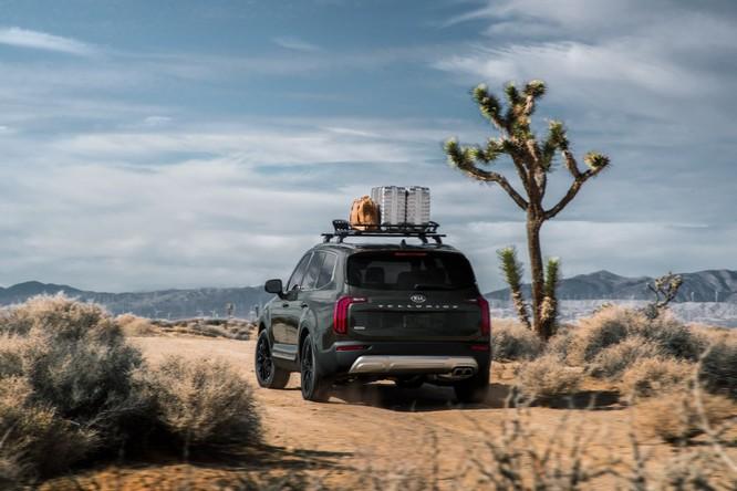 Kia Telluride 2020: Một biến thể của Hyundai Palisade ảnh 8