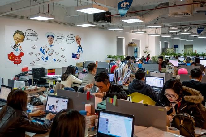 Nguyễn Hòa Bình: Khởi nghiệp ngay từ khi là sinh viên không có gì quá áp lực ảnh 1