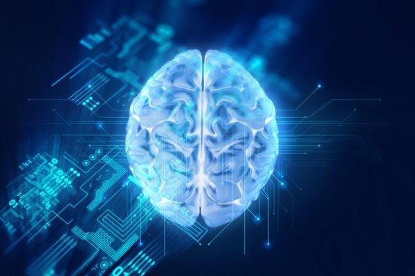 Điểm yếu của trí tuệ nhân tạo: Học mà không… hiểu - ảnh 4