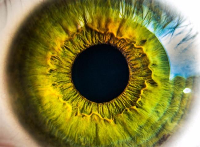 Xác thực mống mắt Galaxy S8 mạnh hơn công nghệ của FBI? ảnh 1