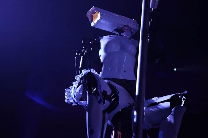 Xuất hiện Robot múa cột thoát y tại triển lãm CES 2018 ảnh 9