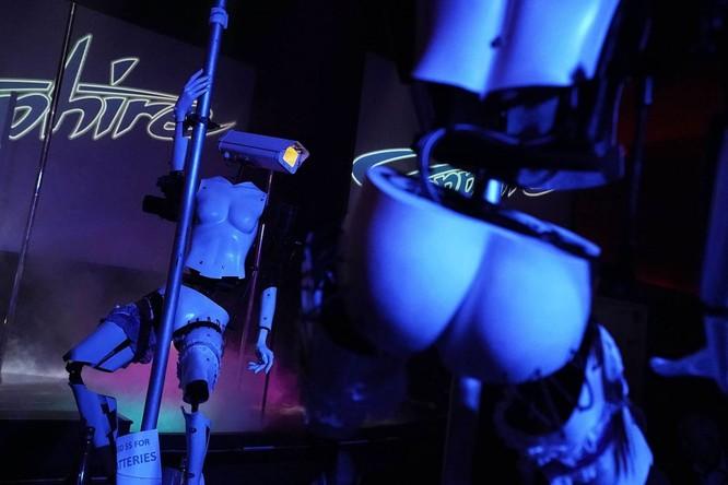 Xuất hiện Robot múa cột thoát y tại triển lãm CES 2018 ảnh 1