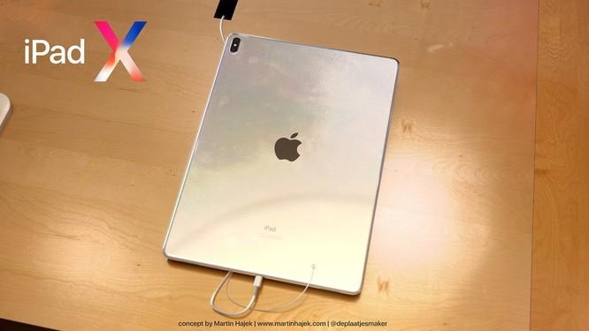Lộ diện hình ảnh iPad X: tai thỏ, màn hình vô cực ảnh 1