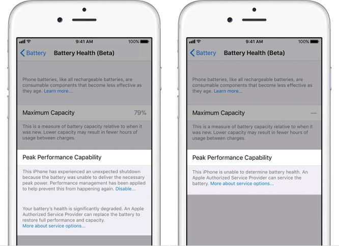 Cách kiểm tra pin chai và vô hiệu hóa tính năng giảm hiệu suất của iPhone ảnh 4