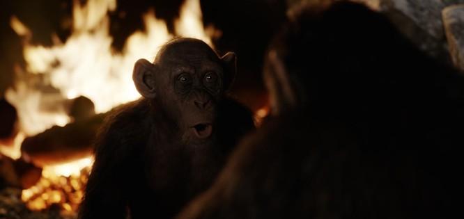 """Phim """"Kong: Đảo đầu lâu"""" sẽ thắng giải Oscar 2018 vào rạng sáng mai? ảnh 5"""