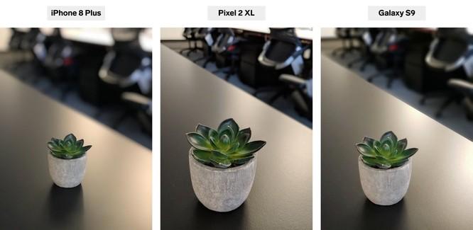 iPhone 8 Plus, Pixel 2 XL và Galaxy S9+: bạn thấy smartphone nào chụp chân dung đẹp hơn? ảnh 1