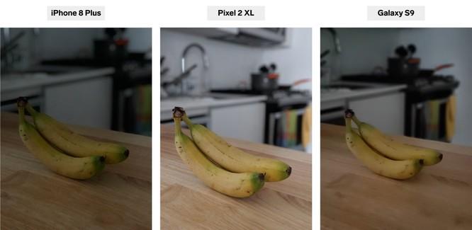 iPhone 8 Plus, Pixel 2 XL và Galaxy S9+: bạn thấy smartphone nào chụp chân dung đẹp hơn? ảnh 4