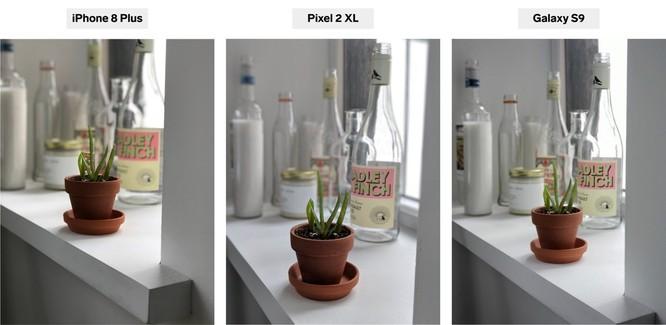iPhone 8 Plus, Pixel 2 XL và Galaxy S9+: bạn thấy smartphone nào chụp chân dung đẹp hơn? ảnh 5