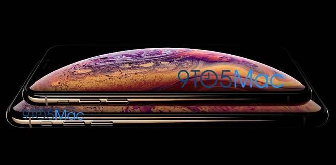 """Apple """"vô tình"""" làm lộ hình nền và màu vỏ iPhone mới ảnh 1"""