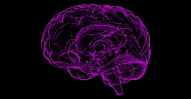 Những tiến bộ trong nghiên cứu cơ chế não bộ mã hóa giọng nói hứa hẹn giúp người câm có thể nói được ảnh 1