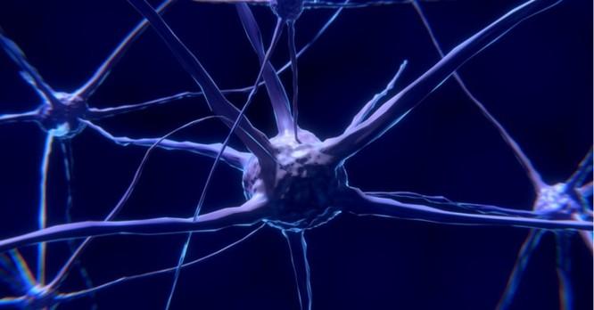 Bộ não của bạn có thể trở thành mục tiêu tấn công của hacker? ảnh 3