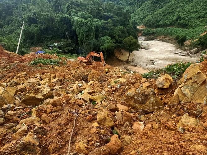 """TS Triệu Văn Hùng: """"Trồng rừng thay thế bằng keo, bạch đàn thì làm sao giữ được đa dạng sinh học!"""" ảnh 1"""