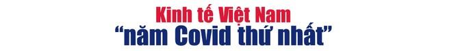 """Kinh tế Việt Nam """"năm Covid thứ nhất"""" và triển vọng tăng trưởng 7% cho năm 2021 ảnh 1"""