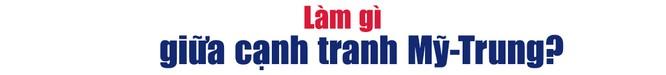 """Kinh tế Việt Nam """"năm Covid thứ nhất"""" và triển vọng tăng trưởng 7% cho năm 2021 ảnh 6"""