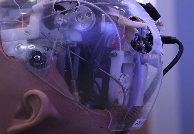 Chân dung Sophia - công dân robot đầu tiên trên thế giới ảnh 3