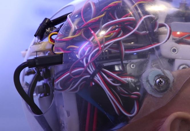 Chân dung Sophia - công dân robot đầu tiên trên thế giới ảnh 4