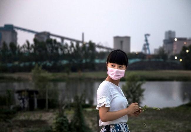 """Khám phá những nhà máy điện """"xanh"""" lớn nhất thế giới ảnh 1"""