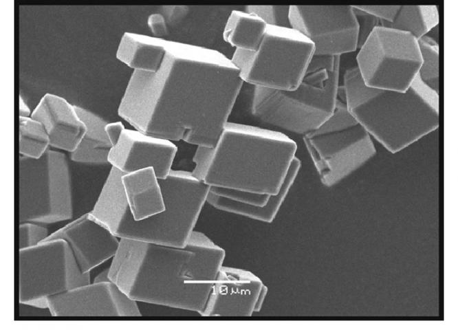 Các nhà khoa học đã sản xuất được một loại chất khoáng giúp hút CO2 ra khỏi bầu khí quyển ảnh 1