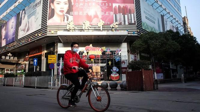 WHO và chuyên gia 3 đại học Havard, Columbia, Queensland nhận định khác nhau về số liệu Covid-19 của Trung Quốc ảnh 1