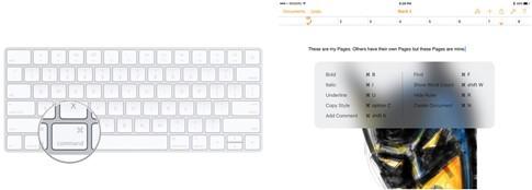 4 mẹo khai thác bàn phím Bluetooth trên iPhone, iPad hiệu quả ảnh 4