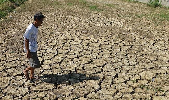 Năm 2030, 45% diện tích Đồng bằng sông Cửu Long có thể bị nhiễm mặn ảnh 1