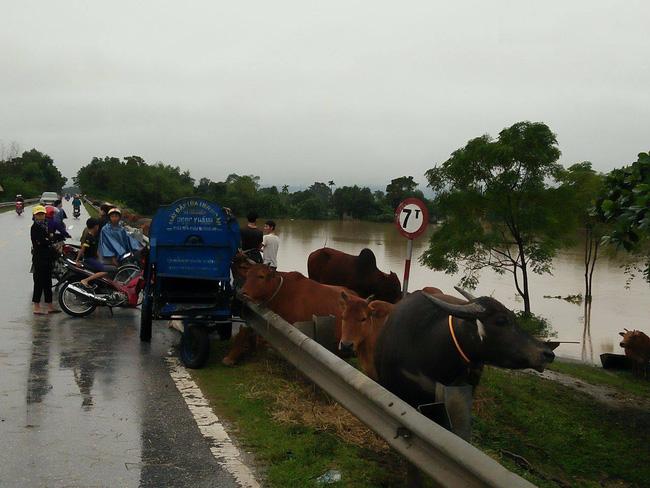 Miền Trung oằn mình trong trận mưa lũ lịch sử ảnh 6