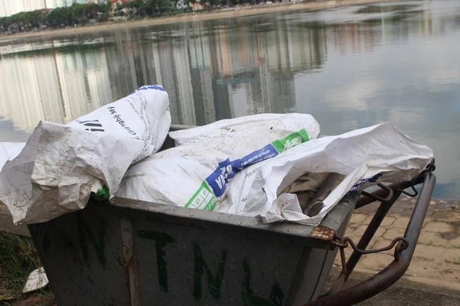Số cá chết đã lập biên bản và chuẩn bị đưa đi tiêu hủy.