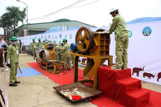 Chiều nay, chính thức tiêu huỷ 2 tấn ngà voi tại Sóc Sơn-Hà Nội ảnh 7