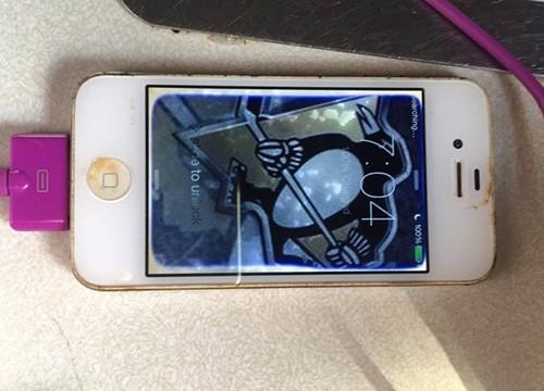 iPhone 4 ngâm một năm dưới hồ vẫn sống sót ảnh 1