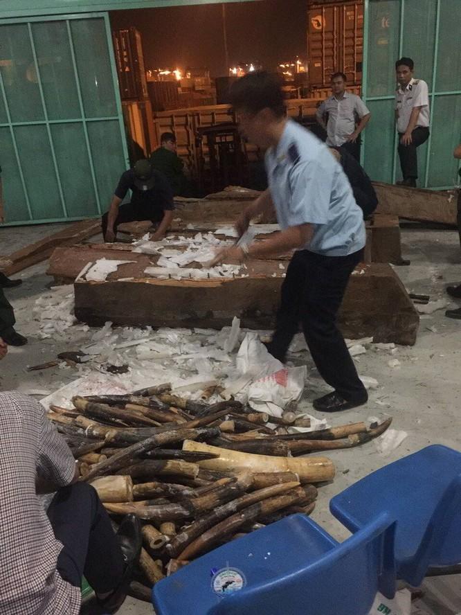 Tiếp tục phát hiện 2 container gỗ nhập khẩu chứa ngà voi với số lượng lớn ảnh 1