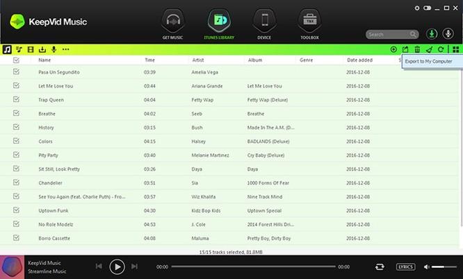Tải và thu âm nhạc số với phần mềm KeepVid Music ảnh 5
