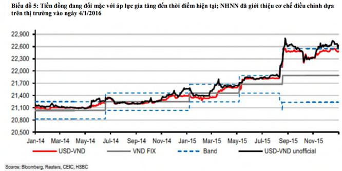 """HSBC: """"NHNN có thể giảm giá tiền đồng thêm trong những tháng tới"""" ảnh 1"""