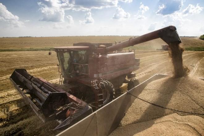 """Ukraine chính thức """"cấm cửa"""" các mặt hàng lương thực nhập từ Nga ảnh 1"""