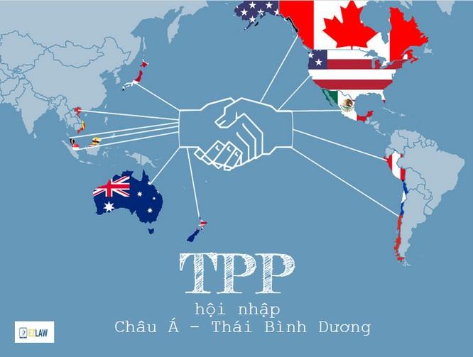Việt Nam: TPP, Biển Đông và những việc quan trọng năm 2016 ảnh 1