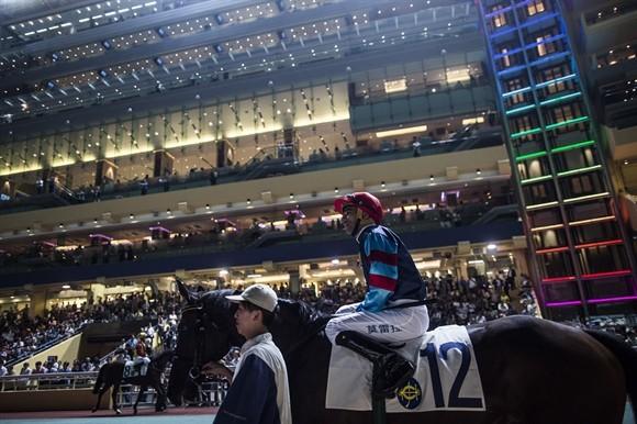 Ngành kinh doanh đua ngựa tỷ USD ở Hong Kong ảnh 1