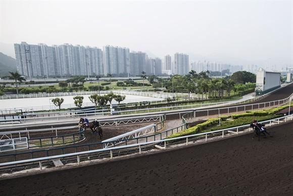 Ngành kinh doanh đua ngựa tỷ USD ở Hong Kong ảnh 4