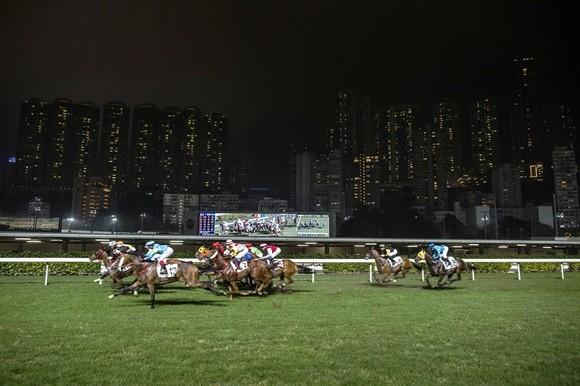 Ngành kinh doanh đua ngựa tỷ USD ở Hong Kong ảnh 9