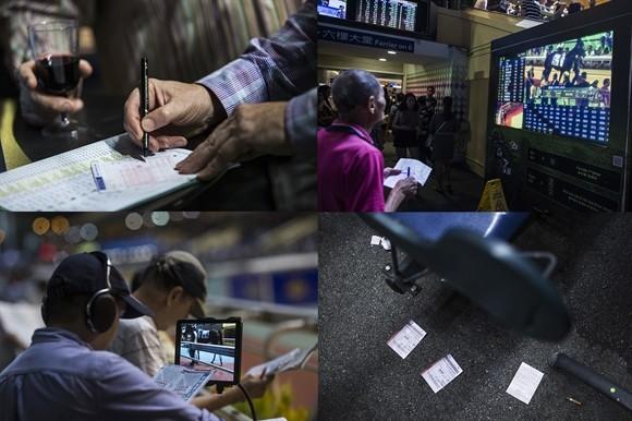 Ngành kinh doanh đua ngựa tỷ USD ở Hong Kong ảnh 10