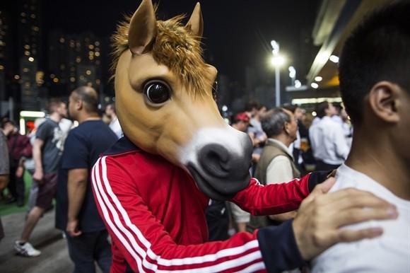 Ngành kinh doanh đua ngựa tỷ USD ở Hong Kong ảnh 11