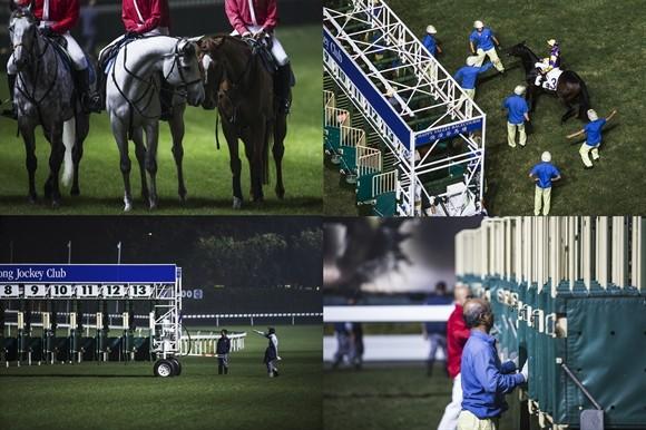 Ngành kinh doanh đua ngựa tỷ USD ở Hong Kong ảnh 12