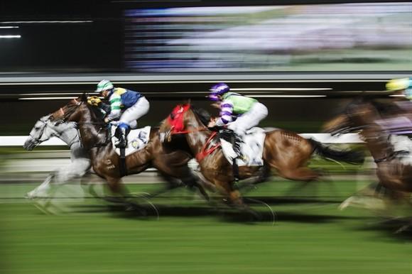 Ngành kinh doanh đua ngựa tỷ USD ở Hong Kong ảnh 14
