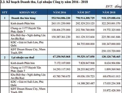 EPS chỉ 791 đồng, DRH vẫn tăng gần 200% trong 1 tháng: Bị thâu tóm hay do đội lái? ảnh 1