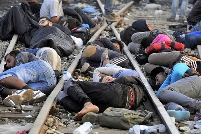 5 năm nội chiến ở Syria đã thay đổi thế giới ra sao? ảnh 2