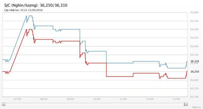 Giá vàng hôm nay (13/9): 36,31 triệu đồng/lượng SJC ảnh 2